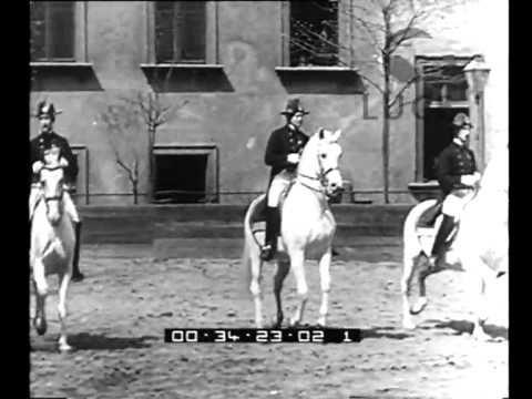 1930s film Vienna. I cavallerizzi di unantica scuola di equitazione si esibiscono in passi classici di alta