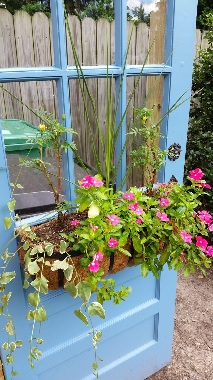 DIY trash can enclosure, Repurposed door, hide outdoor trash cans with an old door.  Bought door at Habitat ReStore, painted in Sherwin Williams' Blue Cruise.  Added hayrack flower box and antiquish door knob from Hobby Lobby.  Perfect for hiding ugly trash cans from view.