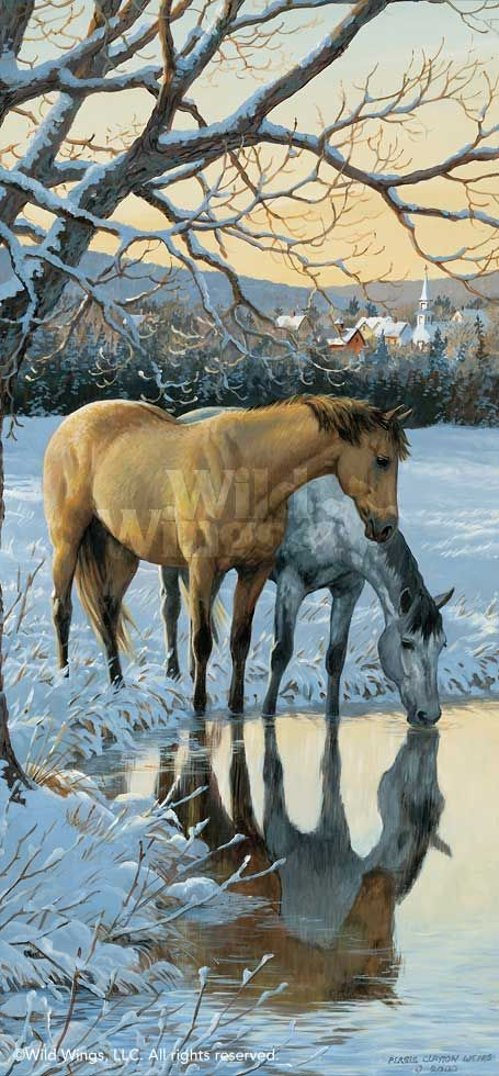 www.wildwings.com DirectionsWEB fn_webcart_zoomImage.php?img=reflections-horses-painting-by-persis-clayton-weirs-A925664181d.jpg