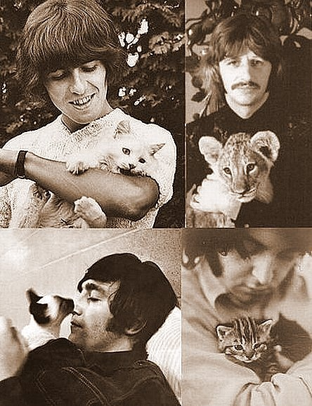 The Beatles [insert love here]