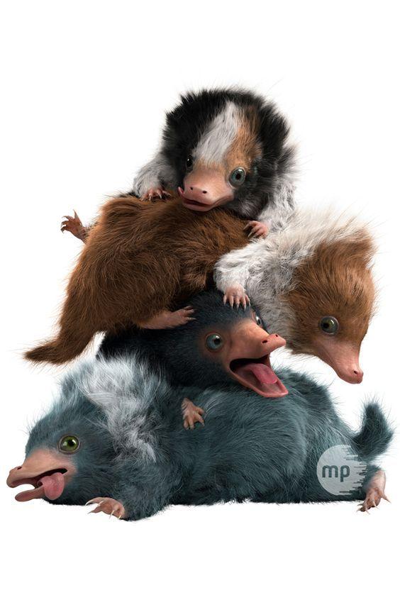 Pin Von Michi Auf Wizarding World Mit Bildern Phantastische Tierwesen Fantastische Tierwesen Tierwesen