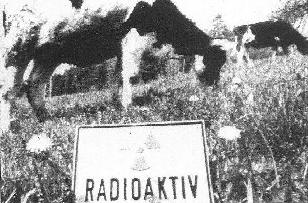 chernobyl leche radiactiva