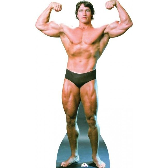 arnold body builder lifesize cardboard cutout