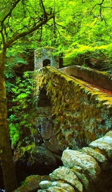 Ancient Stone Bridge, Perthshire, Scotland photo via kathy