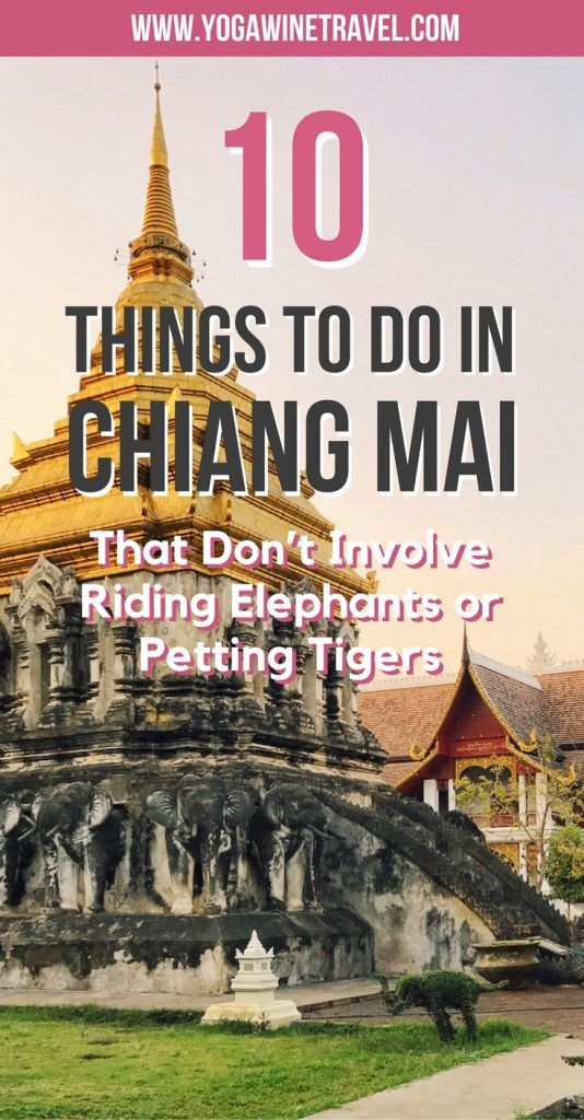 Yogawinetravel.com: 10 Things to Do in Chiang Mai That Don't Involve Riding Elephants or Petting Tigers. If you are visiting Chiang Mai and aren't sure what to do in the city, there are a plethora of amazing sights and landmarks that you should visit. Read on for 10 of the top things to do in the city to add to your Chiang Mai bucket list, how to get there and get around, the weather in Chiang Mai and where to stay!