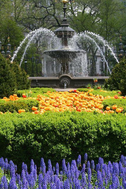 Spring flowers in Bryant Park, New York City.