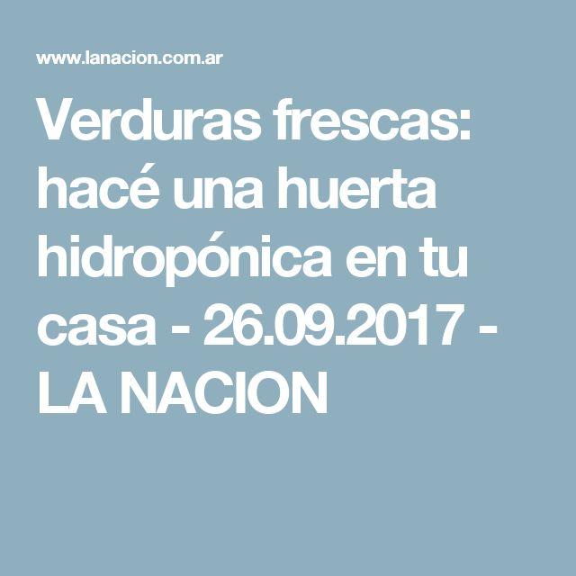 Verduras frescas: hacé una huerta hidropónica en tu casa - 26.09.2017 - LA NACION
