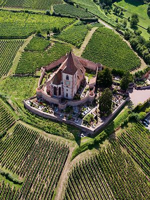 Si vous êtes de passage en Alsace découvrez absolument la route des vins, un incontournable de la région #Alsace #Vins