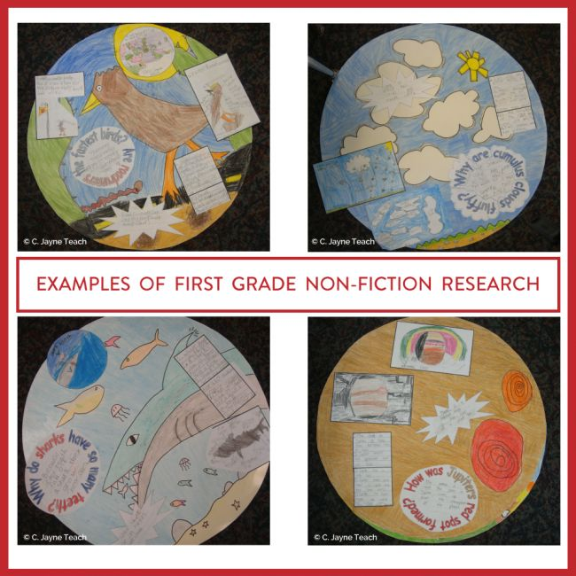 Wonder Bubbles are an excellent way to incorporate non-fiction, evidence based writing into your classroom.