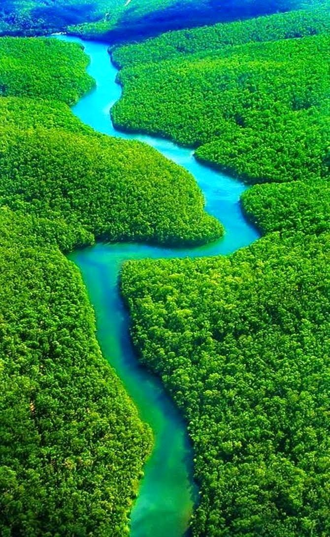 One Day In The Amazon River Basin Beautiful Places Wonders Of