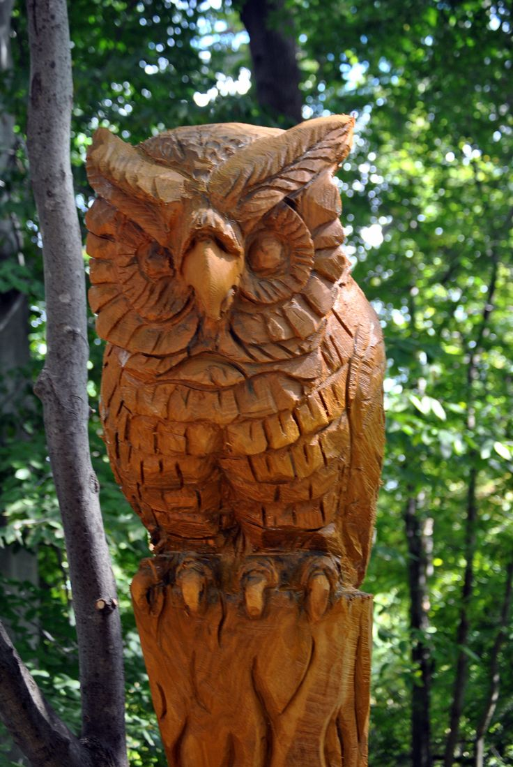 Trending tree carving ideas on pinterest faces