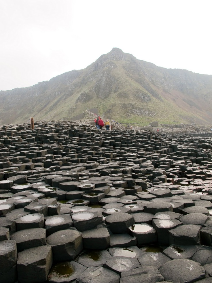 awesome Ireland. Awesome Ireland, Beautiful Places, Ireland Castle, Giants Causeway Ireland, Northern Ireland, Travel, Irish, Basalt Columns, The Moon