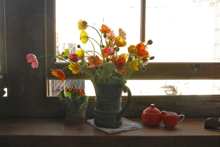 Poppies by the window, bring joy to the day....