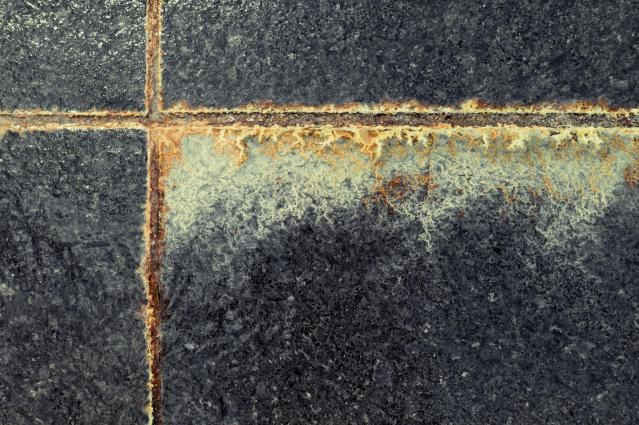 Tips and tricks for cleaning set in mildew out of the grout lines in your bathroom. These techniques can help to completely revitalize the look of your floor.