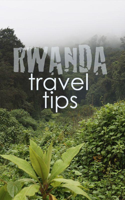 RWANDA: travel tips and gorillas trekking in the Volcanoes National Park! Check it out www.espressofiorentino.com RUANDA: consejos de viaje y trekking con los gorilas en el Parque Nacional de los Volcanes! No te lo pierdas! #África #Africa #Rwanda #viajar #travel #tips