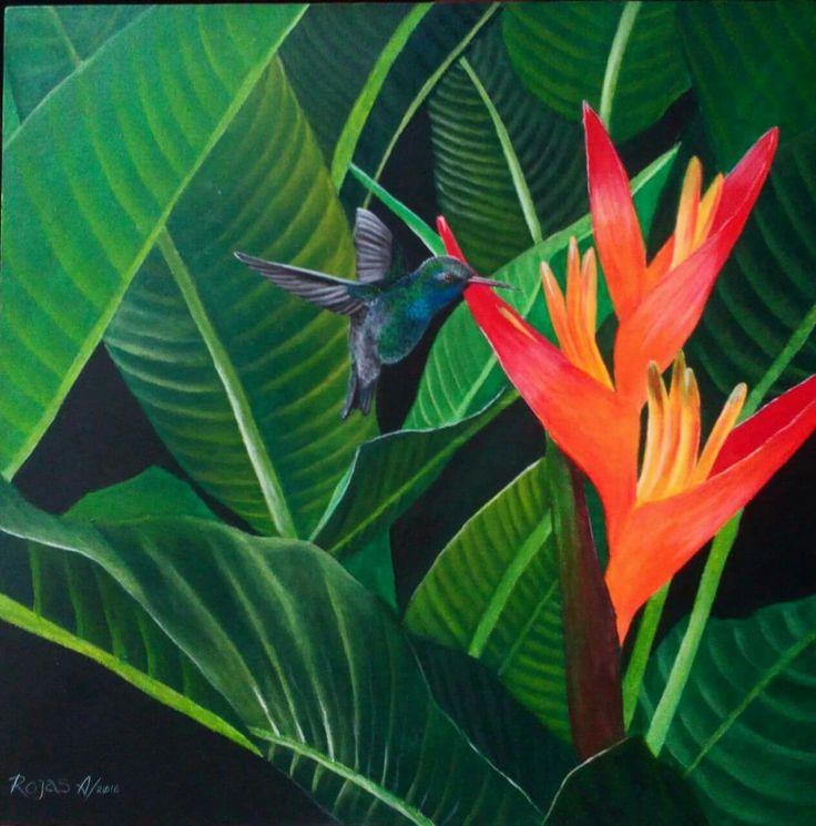 #Hummingbird #Colibri #Heliconia #art #acrylic #RojasA #painting