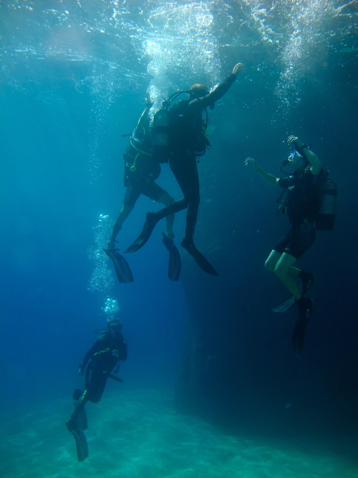 Diving group. Photo by Hannah Catherine Kapsaski.