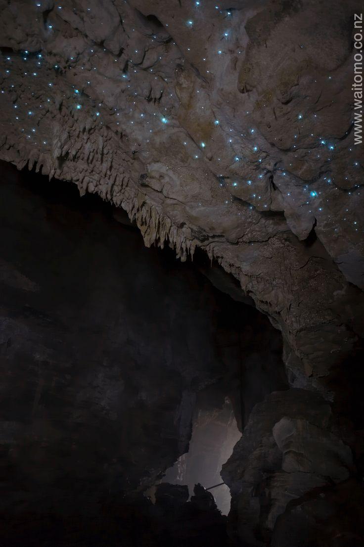 Lost World glowworms www.waitomo.co.nz