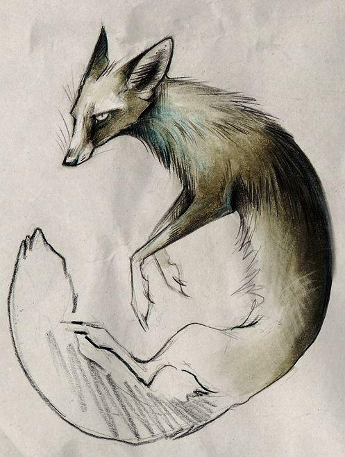 Animal Illustrations by Skia