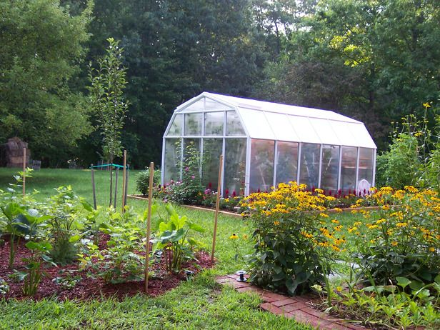 Best 25 Backyard Greenhouse Ideas On Pinterest Small Garden Greenhouse Plans Greenhouses And