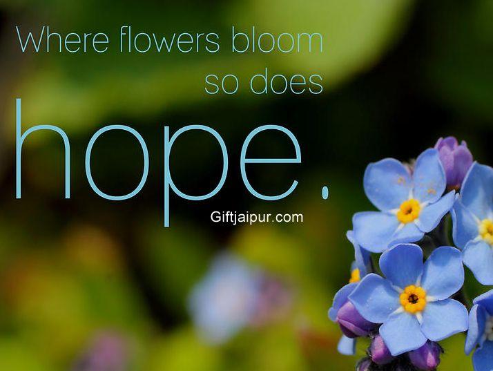 A Flower blossoms for its own Joy..what about you??