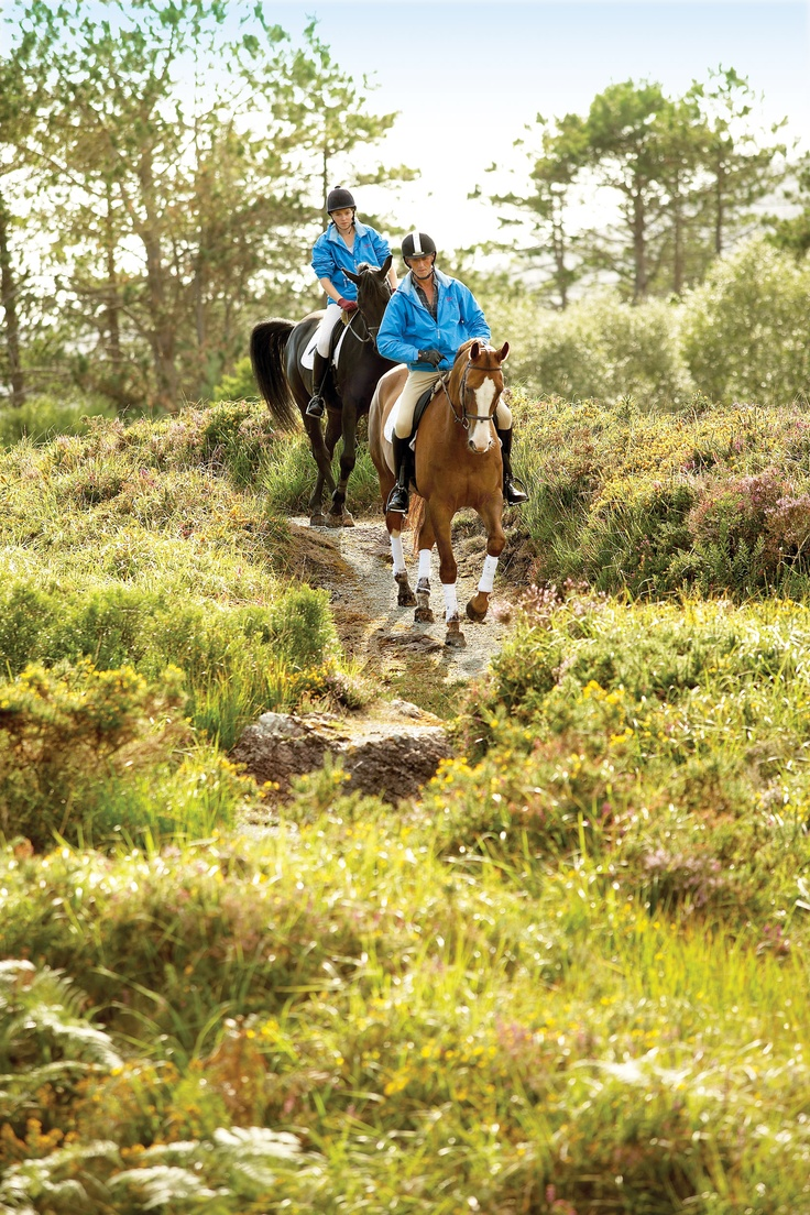 Horse Riding is a popular activity for hotel guests around the estate