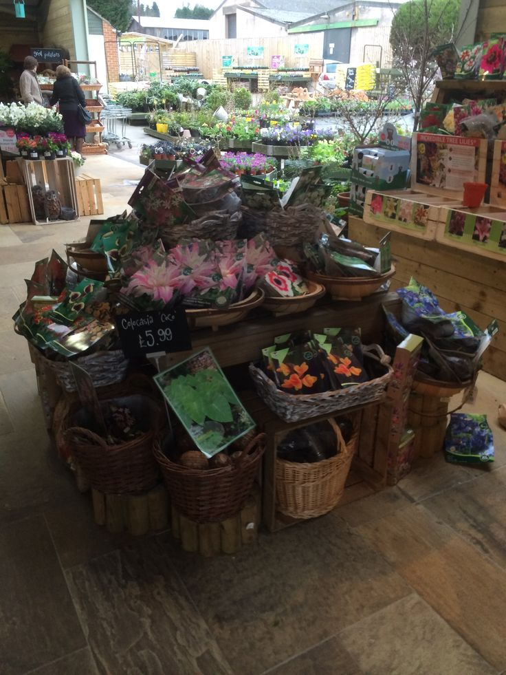 Timmermans Garden Centre I Like That You Have To The Whole Display