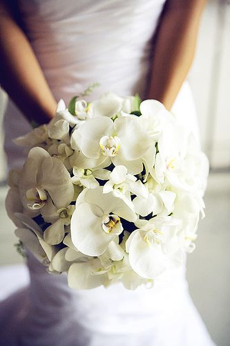 Refined Wedding Bouquets - The Wedding SpecialistsThe Wedding Specialists