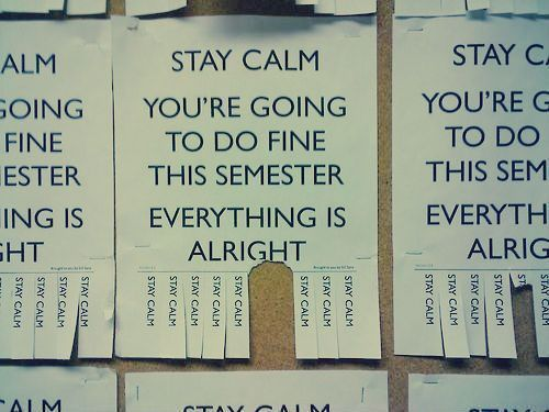 STAY CALMColleges Girls, Remember This, Daily Reminder, Back To Schools, Stay Calm, Nurs Student, Funny Quotes, Final Weeks, Inspiration Quotes