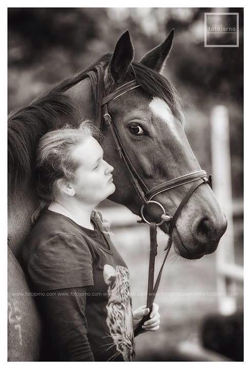 Equine Trader Vetpro Photo of the Week entrant - Krystal Mayall