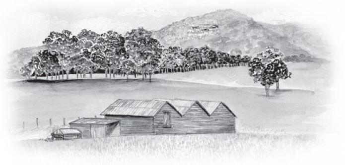 #Winery #History #Pokolbin #HunterValley #GlenOakWines
