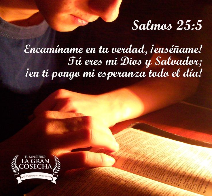 M s de 25 ideas incre bles sobre salmo 25 en pinterest for Ensename todo
