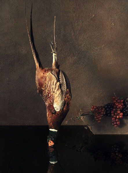 Still image from Falling Bird, 2007, Ori Gersht, courtesy of Mummery and Schnelle Gallery London, Nogah Gallery Tel Aviv, CRG Gallery New York, Angles Gallery Los Angeles