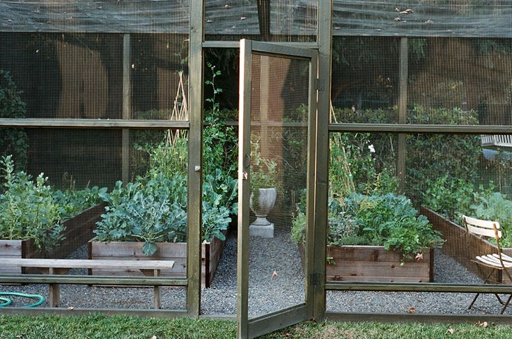 Enclosed garden i 39 d like to see critters get in here for Enclosed vegetable garden designs