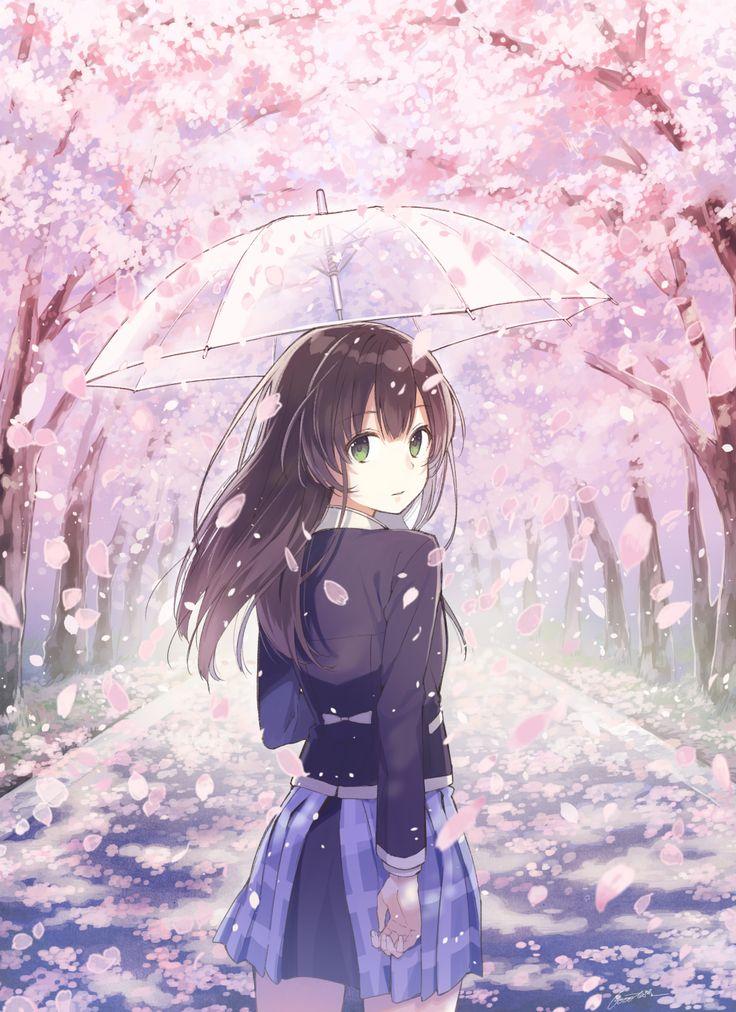 un sendero de cerezos si por si solo ya es hermoso con esta belleza es un sueño del que no quisiera despertar