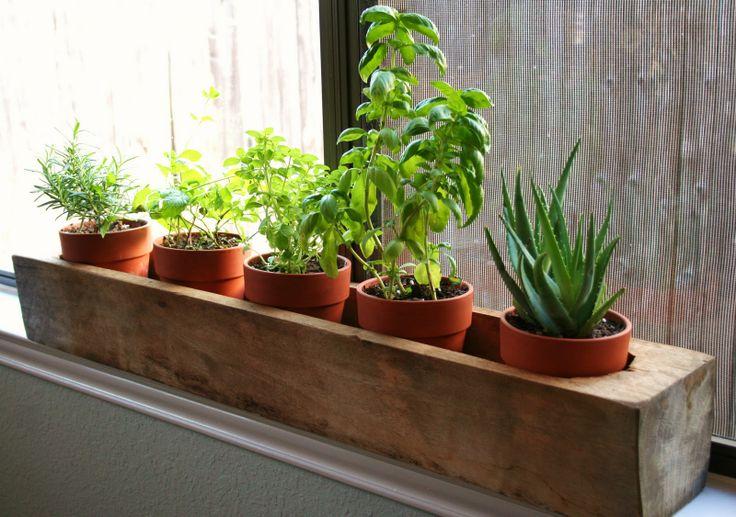 Indoor windowsill planter window herb planter the - Windowsill herb pots ...