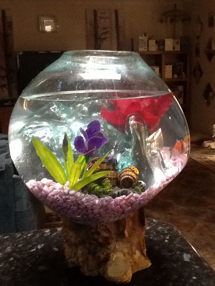 Handmade balinese blown glass terrarium fishbowl on for Fish tank driftwood