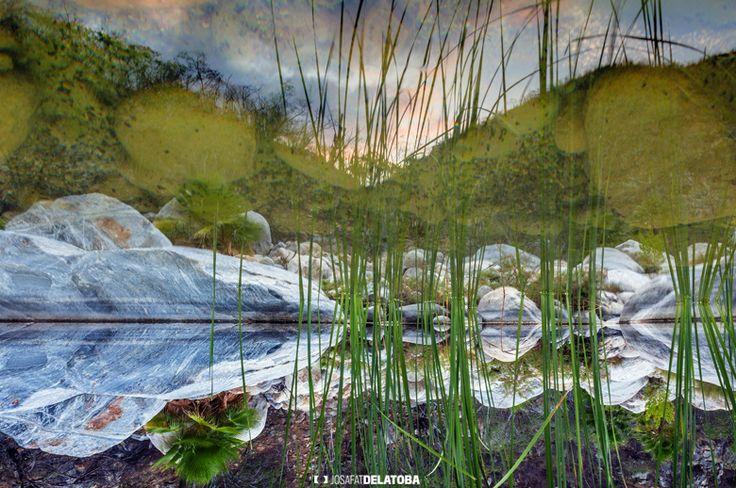Beautiful reflection in the wáter #josafatdelatoba #loscabos #cabophotographer  #landscapephotography #sundown #sanjosedelcabo #reflection #lake