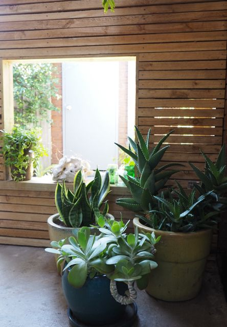 RedBird design: lush carport conversion. We turned this from a very dismal carport into a contemporary oasis.