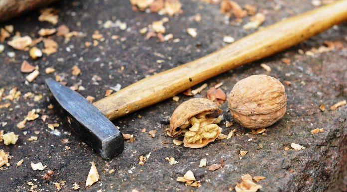 Jak využít skořápky vlašských ořechů? Připravte si z nich odvar, doplní v těle jód