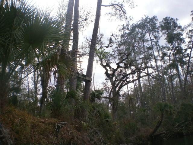 Camping florida swinger