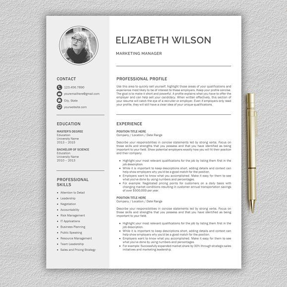 Best Resume Templates Images On   Lion Professional