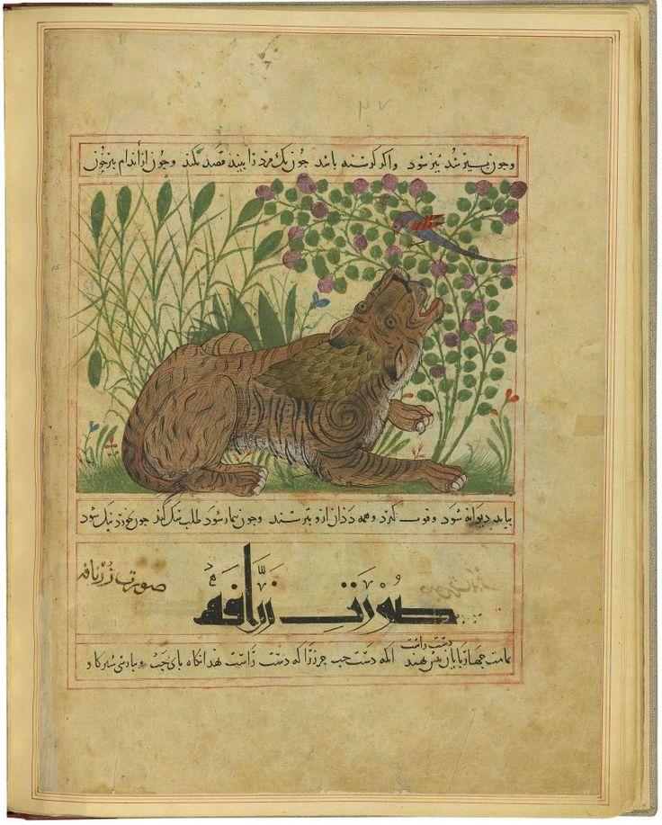 el yazmalari on Pinterest | Illuminated Manuscript, Medieval ...