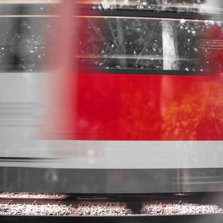 Markus Medinger Picture of the Day   Bild des Tages 30.07.2016   www.mkmedi.de #mkmedi  #365picture #365DailyPicture #pictureoftheday #bilddestages #streetphotografie  #instagood #photography #photo #art #photographer #exposure #composition #focus #capture #moment  #diebahn #sbahn #train #subway #nyfeelings #urban #city  #rosensteinpark #stuttgart #badenwuerttemberg #germany #deutschland  @deinstuttgart @badenwuerttemberg @visitbawu @srs_germany @geheimtippstuttgart @stuttgart.places…