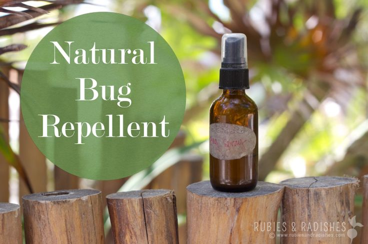 Natural Bug Repellent - Rubies & Radishes ngredients 1 tablespoon Jojoba Oil, 1 tablespoon Neem Oil, 30 drops of Citronellla Essential Oil, 20 drops of Lemongrass, Essential Oil, 10 drops of Basil Essential Oil. Using your funnel, add the Jojoba Oil, Neem Oil and Essential Oils to your glass spray bottle. Then fill up the rest with with hazel, about 3 tablespoons. Give it a good shake, before each use.
