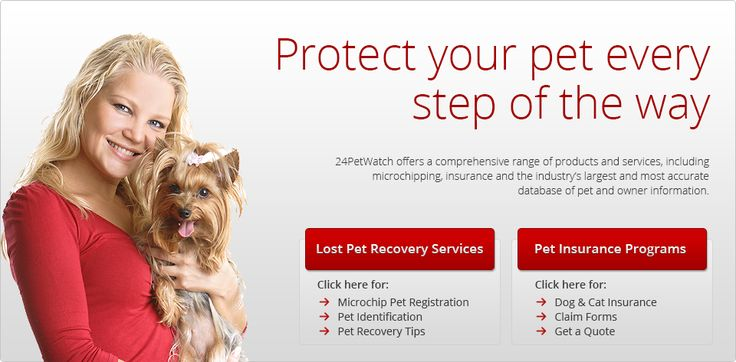 A service for caring for your pets.   microchip recovery service for lost pets and Pet Insurance | 24Petwatch Pet Health Insurance for Cats & Dogs
