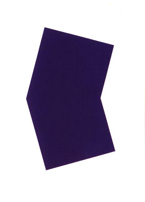 Ellsworth Kelly Purple 2001 colour lithograph, edition of 45 [published by Gemini Gel] 128.5cm x 101cm [framed]
