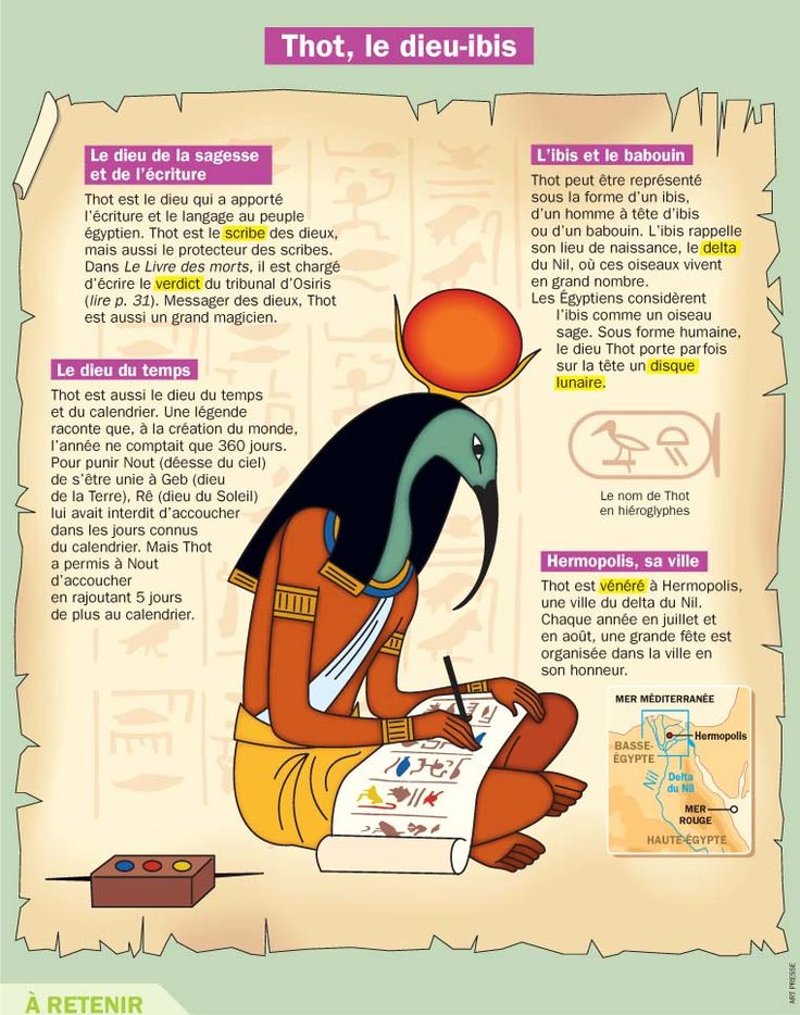 Fiche exposés : Thot, le dieu-ibis