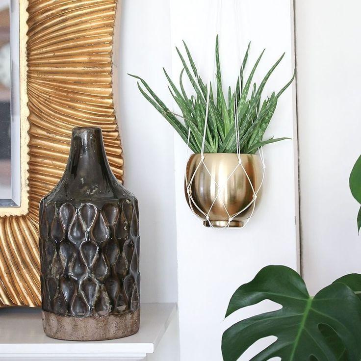 Hängepflanzen sind als Trend gar nicht mehr wegzudenken. Wir lassen uns diesen natürlich nicht entgehen und dekorieren unsere Wohnung mit einer selbstgemachten Makramee Hängeampel.💛💚 #wohnklamotte #trend #diy #makramee #flower #gold #love #palm #living #einrichtung #inneneinrichtung #zimmer #raum #interior #dekoration #deko #idee #inspiration #inspo #getinspiredbyus #letusinspireyou #blogger_de #germaninteriorbloggers #interior123 #interior4you #interior2you #interiorlove #hamburg #pantone…