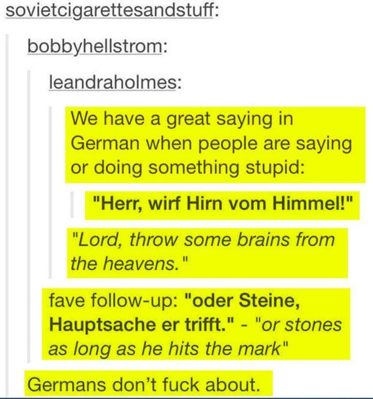 Deutsche Sprache, schwere Sprache: Denn Deutsche Sprache ist direkt